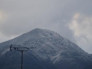 冠雪.JPG